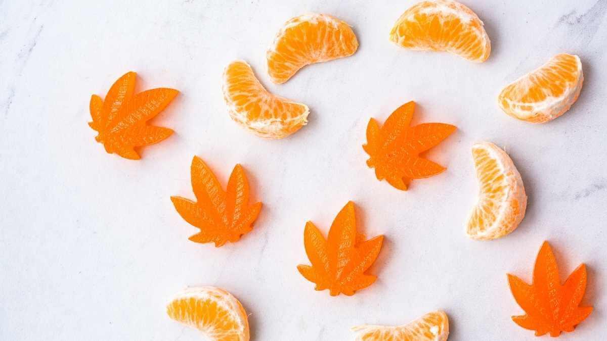 Orange Cannabis sativa infused  THC gummies. Alternative to smoking and vaping