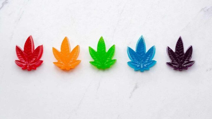 THC gummies in rainbow colors. Cannabis edibles for marijuana lovers