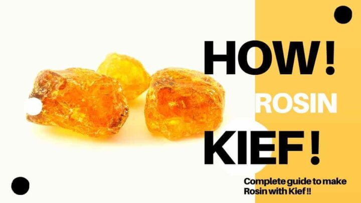 How to make rosin with kief